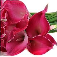 Sanysis flores artificiales individuales, 1 X 10 cabezas lirio de flores de seda (Fucsia)