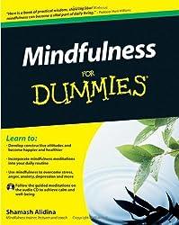 Mindfulness For Dummies (Book + CD) by Shamash Alidina (2010-08-09)