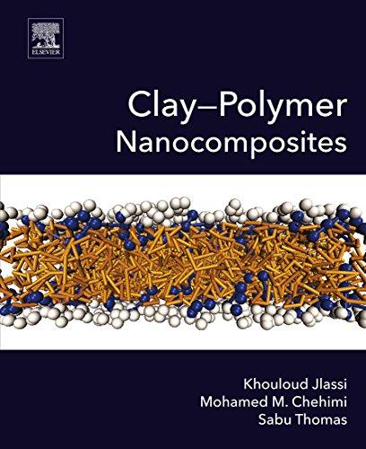 Clay-Polymer Nanocomposites (English Edition)