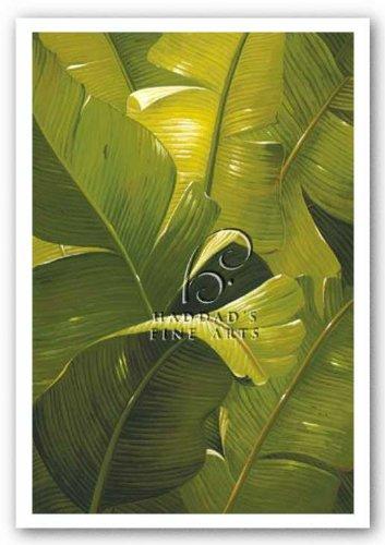 Amazon Canopy von Verdi Kunstdruck (Amazon Canopy)