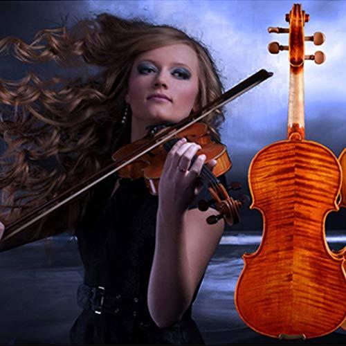 Violini Strumenti a Corda Tigre Acero Legno Strumento a Corde in Legno Parti Professionale Regalo Meraviglioso (Color : 4/4)