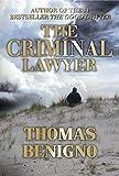 The Criminal Lawyer: (A Good Lawyer Novel)
