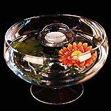 Runde Glas-Schale Roxy 75 Höhe 11cm ø 17cm. Flache Glasschale auf Fuß als Deko-Schale von Glaskönig - 2