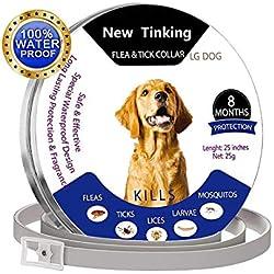 ProHomer Cuello de Control de plagas, Impermeable, para Perro, antipulgas para 8 Meses (63 cm), Color Gris (2)