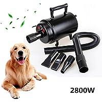 Secador de pelo de la albornoz del hogar del cuidado del animal doméstico del secador del pelo del perro 2800w con el calentador para las velocidades altas de los perros del gato