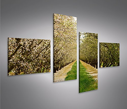 quadro-moderno-fioritura-primavera-alberi-mandorli-4lp-stampa-su-tela-quadro-x-poltrone-salotto-cuci