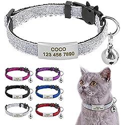 Beirui Collier pour chat avec étiquettes d'identification à glissière en acier inoxydable - Médaille d'identification personnalisée gravée avec boucle de sécurité à dégagement rapide