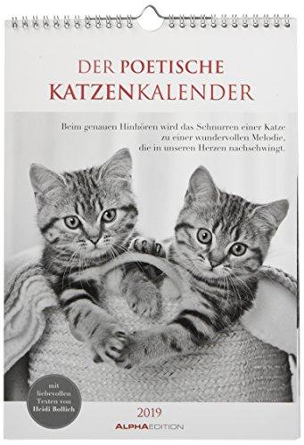 Der poetische Katzenkalender 2019 - Literarischer Bildkalender (24 x 34) - mit Zitaten - schwarz/weiß - Tierkalender 2019