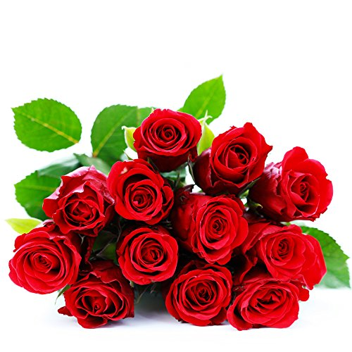 be-mine-dozen-red-roses-12-red-roses-bouquet-by-eden4flowers