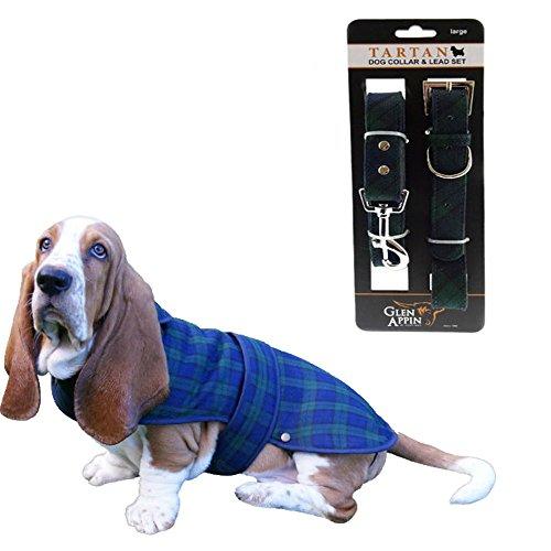 The Scotland Kilt Company Hund Halsband & Leine Set - Schwarz Armbanduhr mit Passenden Hunde Mantel - Schwarze Armbanduhr, L