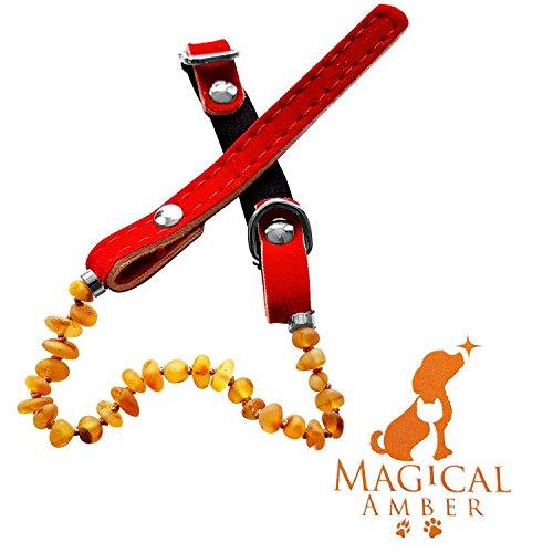 ambre-collier-anti-puces-tiques-et-soulager-la-douleur-magique-de-luxe-pour-animaux-100-prevention-1