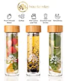 The Lotus Glass Tea Tumbler Bottle with Infuser + Strainer for Loose Leaf & Ice Tea, Cold Brew Coffee or Fruit Water. Bamboo Lid 450ml. Travel Bottle + Perfect Gift. Soulful Design. Beautifully Packaged.