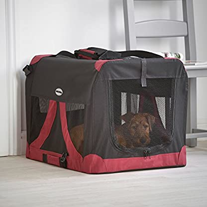 MILO & MISTY Large Fabric Pet Carrier - Lightweight Travel Seat for Dogs, Cats, Puppies - Made of Waterproof Nylon and a… 2