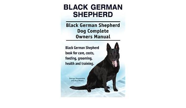 Buy Black German Shepherd  Black German Shepherd Dog