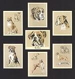 The Boxer Dog Art Sammelkarten