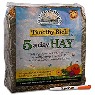 Tigerbox 1 Kilogram Natures Own Timothy Rich 5 a Day Hay Foraging Feed for Rabbits Guinea Pigs Chinchillas 10