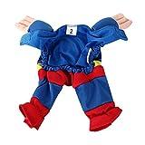 DIGIFLEX Haustier Superman Kostüm, Superhelden – Fasching/Fastnacht, Halloween – Outfit für kleine Hunde oder Katzen bis 25cm Hals - 8