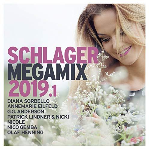 Schlager Megamix 2019.1