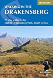 Walking in the Drakensberg: 75 walks in the Maloti-Drakensberg Park (Cicerone Guides)