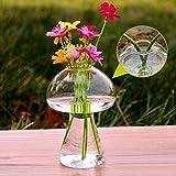 Bazaar Form de Champignon Pflanzen hydroponiques Glas Blume Haus Vase Dekoration