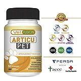 Antiinflamatorio Natural para Perros y Gatos   Colágeno + Cúrcuma + Condroitina + Magnesio + MSM + Vitamina C   Combate el dolor y la inflamación   Recupera su energía y movilidad   50und. sin azúcar