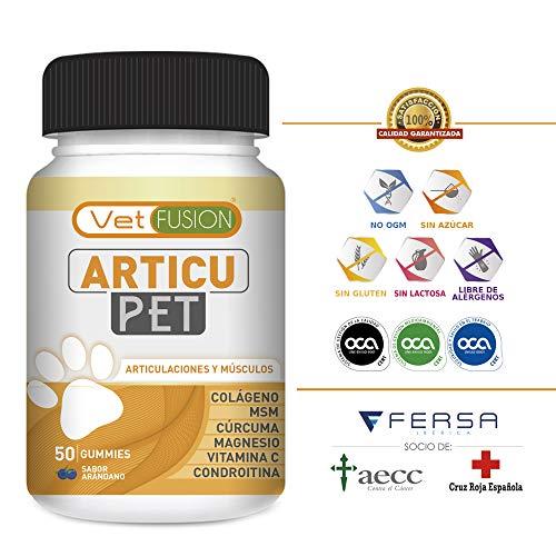 ARTICUPET – Potente Antiinflamatorio + Protector y Regenerador Articular para Perros y Gatos – Colágeno + Cúrcuma + Magnesio – Elimina dolores recuperando su energía y movilidad – 50u. sin azúcar