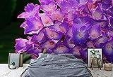 Wallsticker Warehouse Blumen Hortensie Lila Vlies Fototapete Fotomural - Wandbild - Tapete - 254cm x 184cm / 2 Teilig - Gedrückt auf 130gsm Vlies - 1563V4 - Blumen
