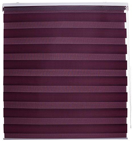 Blindecor Lira - Estor enrollable doble tejido, noche y día, 120 x 25