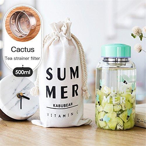 UPSTYLE Cute Mini Sport tragbar Glas Wasser Saft Flasche Weithals mit Tee-Ei und Flasche Sleeve für Entsaften/Tee/Milch Wasser/Energie Drink für Reisen/Wandern/Gym, OZ (500ml), Green Cactus (Glas Milch Flaschen Zu Trinken)