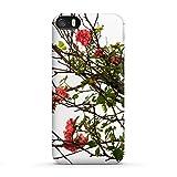 artboxONE Apple iPhone SE Premium-Case Handyhülle Rose von Tan Kadam - Premium-Case Handyhülle Smartphone Case