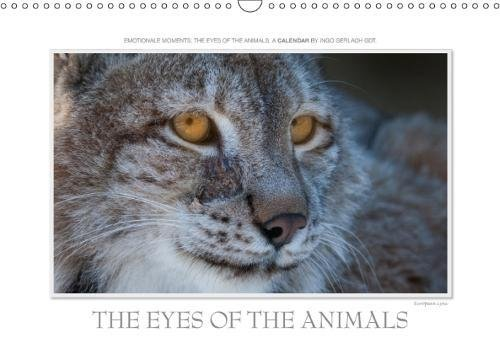 Emotional Moments: the Eyes of the Animals. UK-Version 2018: Over the Years, the Renowned Nature Photographer, Has Photographed the Eyes of Animals. More at Tierphoto.De (Calvendo Animals) por Ingo Gerlach GDT