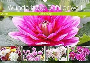 Wunderbare Dahlienwelt (Wandkalender 2020 DIN A3 quer): Die Königin des Spätsommers in farbenfroh leuchtenden Fotografien (Monatskalender, 14 Seiten ) (CALVENDO Natur)