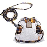 Cat Vest Harness And Leash Adjustable Soft Mesh Holster Style Best For Cats
