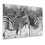 Bilderdepot24 Immagine su telaio a cunei Accoppiamenti della zebra 180x120 cm 4tlg - Già montato sul telaio, stampa su tela di cotone 100%, Stampa artistica intelaiata e pronta da appendere