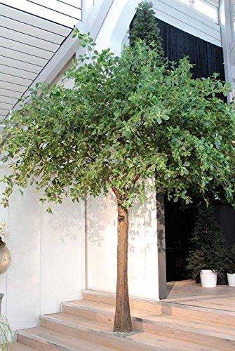 artplants.de Set 2 x Künstliche XXL Schefflera Tracy, grün, 400cm - Kunstbaum - Deko Bäume