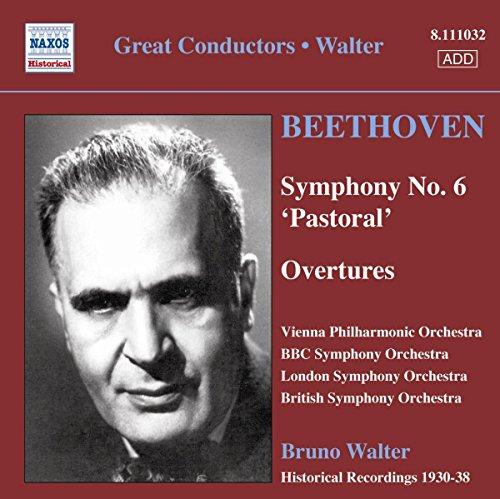 """Beethoven : Symphonie n° 6 """"Pastorale"""""""