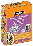 Cléopâtre - LCC19-360 - Résine Crystal'Diamond - Coffret de Résine pour Verre crystal - 360 ml