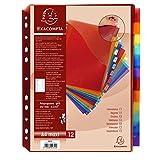 Exacompta 4844E Paket von 12Trennblätter A4+ Polypropylen verschiedene Farben