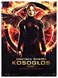The Hunger Games: Mockingjay - Part 1 [DVD]+[KSIĄŻKA] [Region 2] (IMPORT) (Keine deutsche Version)
