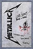 Metallica - Live Shit (Binge & Purge) (2 DVD + 3 CD)