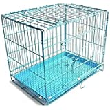 Royal Pet 24-inch Iron and Plastic Cage with Removable Tray for Dogs and Rabbits (Blue)