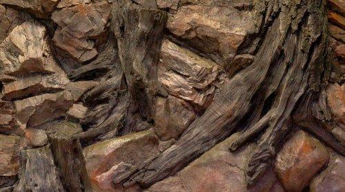3D Aquarienrückwand 100x60 Root