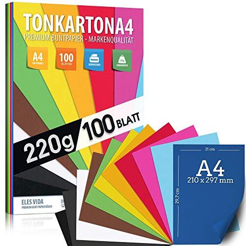 100 Blatt Buntpapier TONKARTON DIN A4 - 220 g Set 10 Farben - Bastelpapier Dick, Farbige Blätter - Pappe für Kinder, DIY Bogen, Cardstock Zubehör - Fotoalben Geschenke, Kreativ Bedarf, MADE IN GERMANY
