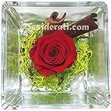 Composizione rosa stabilizzata profumata rossa 8x8