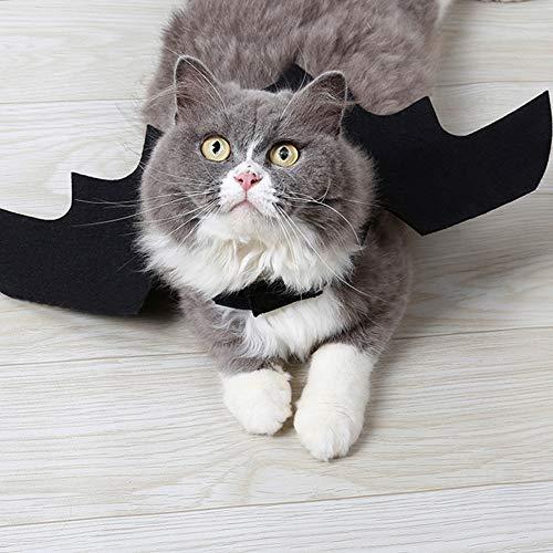 Kostüm Batman Katze - Hemore Kreatives Fledermauskostüm für Hunde, Katzen, Haustiere, Flügel, Halloween, Batman-Design