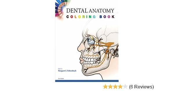Dental Anatomy Coloring Book, 1e: Amazon.co.uk: SAUNDERS, Margaret J ...