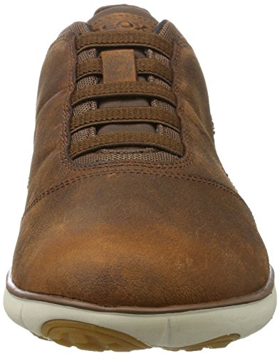 Sneakers Geox U Lt Nebula Ar611dq Marron B Homme Brown Basses Okn0wP8