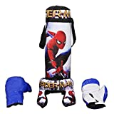 #8: Early Age Boxing Kit 1 Punching Bag, 1 Head Security Gear, & 2 Gloves for Beginners by eRunners