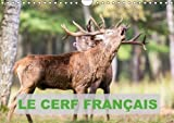Le Cerf Francais 2018: Photos De Cerfs En France