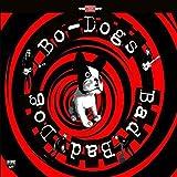 Bad Bad Dog! [Vinilo]